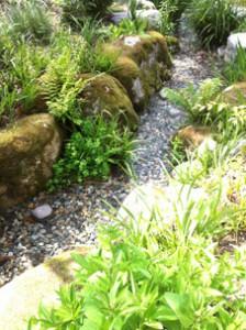 北アルプスの天然水が流れる小川も。